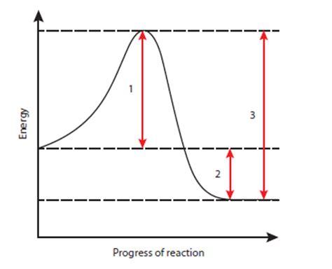 Chemistry Gcse Coursework Rates Of Reaction - Scanstrut